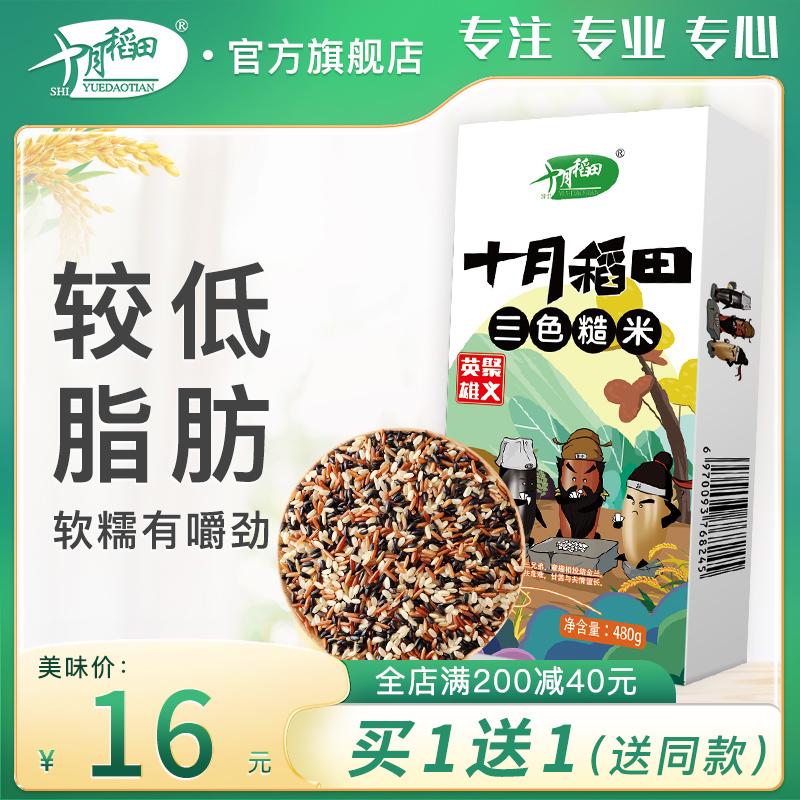 买1送1 十月稻田三色糙米饭低脂肪五谷杂粮饭红黑米粗粮农家480g