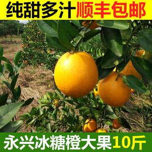 永興冰糖橙新鮮水果橙子10斤大果包郵當季純甜橙子湖南冰糖橙甜橙