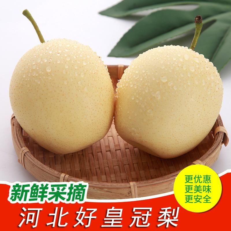 梨子新鲜10斤河北皇冠梨当季水果皮薄多汁非冰糖雪梨砀山梨水晶梨
