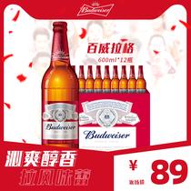 12瓶装熟啤包邮b百威啤酒美式拉格600mlBudweiser