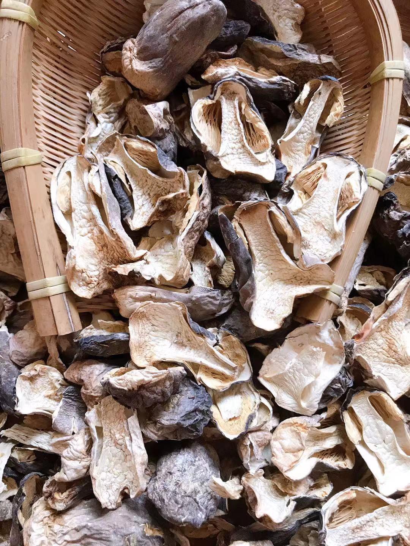 新鮮な農家のキノコの干物とブロッコリーのキノコの食用キノコの土産キノコ