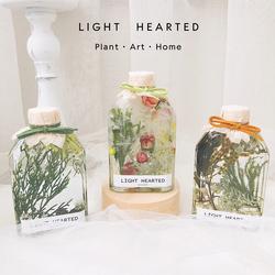 浮游花瓶植物标本室内装饰永生花干花礼盒摆件生日情人教师节礼物