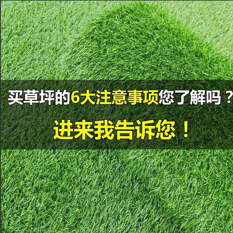 Artificial plastic decoration plant outdoor engineering greening kindergarten artificial green turf carpet