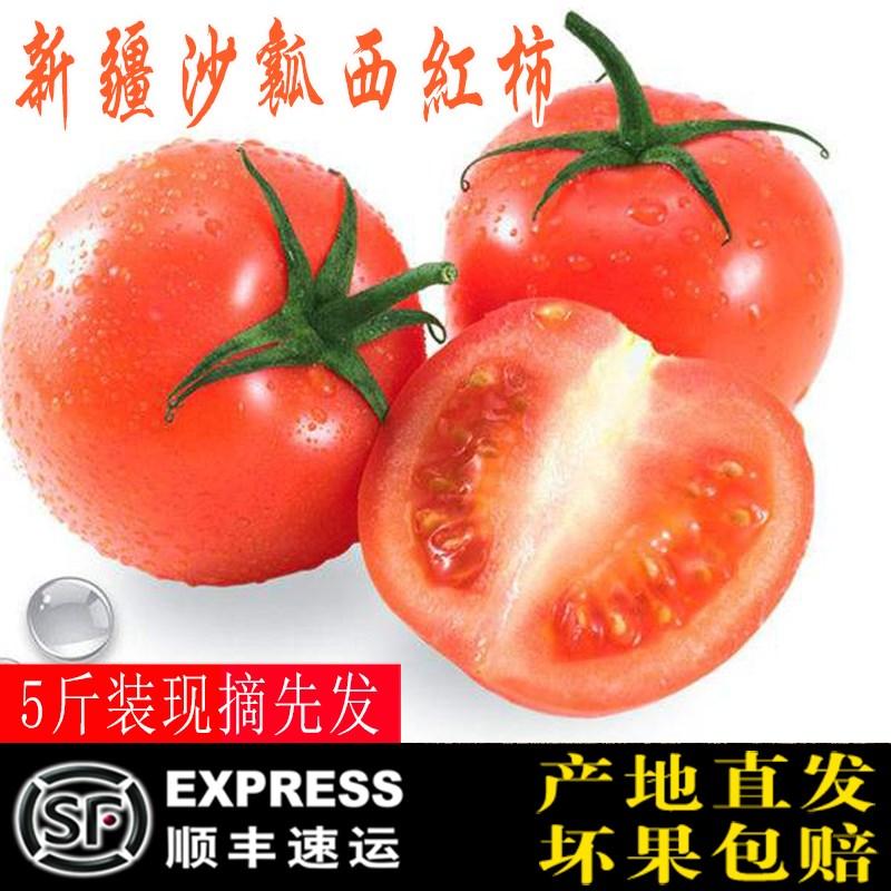 新疆西红柿新鲜蔬菜水果沙瓤自然成熟西红柿番茄5斤装顺丰包邮