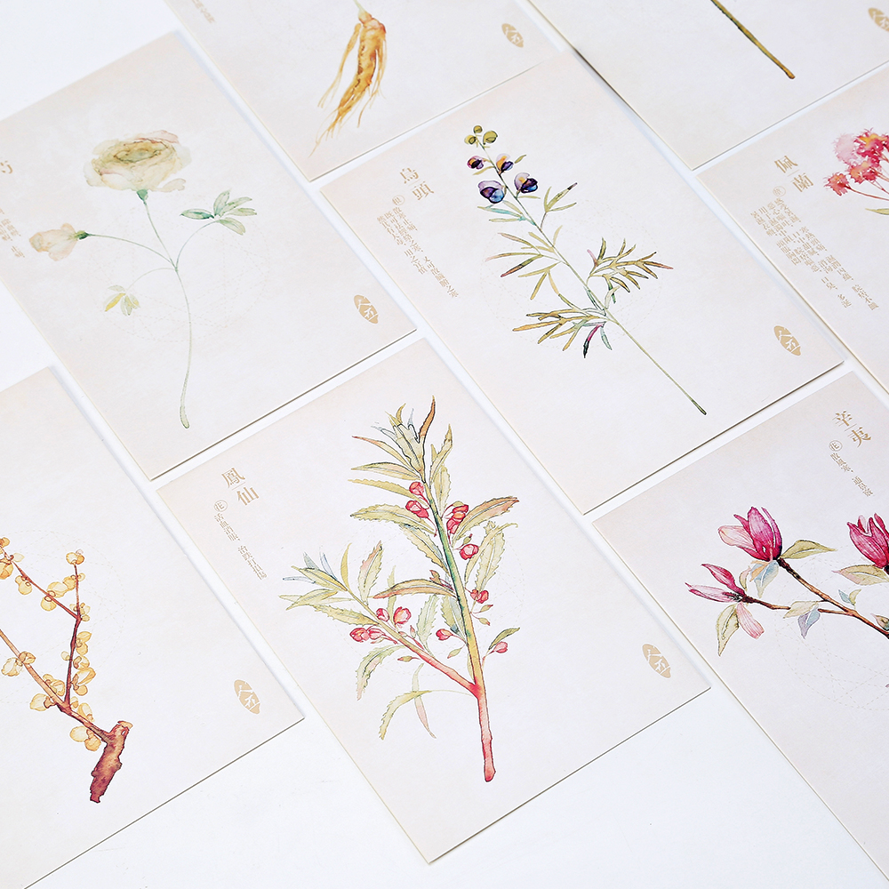Letter lovers Postcard hand painted Chinese herbal watercolor ancient style literature and art plants 30 cards