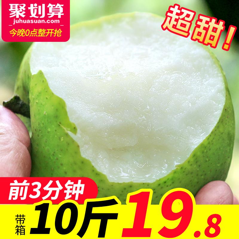 梨子新鲜10斤带箱砀山梨皇冠梨香梨鸭梨早酥梨当季水果现摘翠冠梨