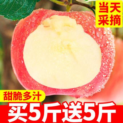 苹果水果新鲜包邮当季红富士整箱10斤装一箱陕西野生冰糖心丑苹果