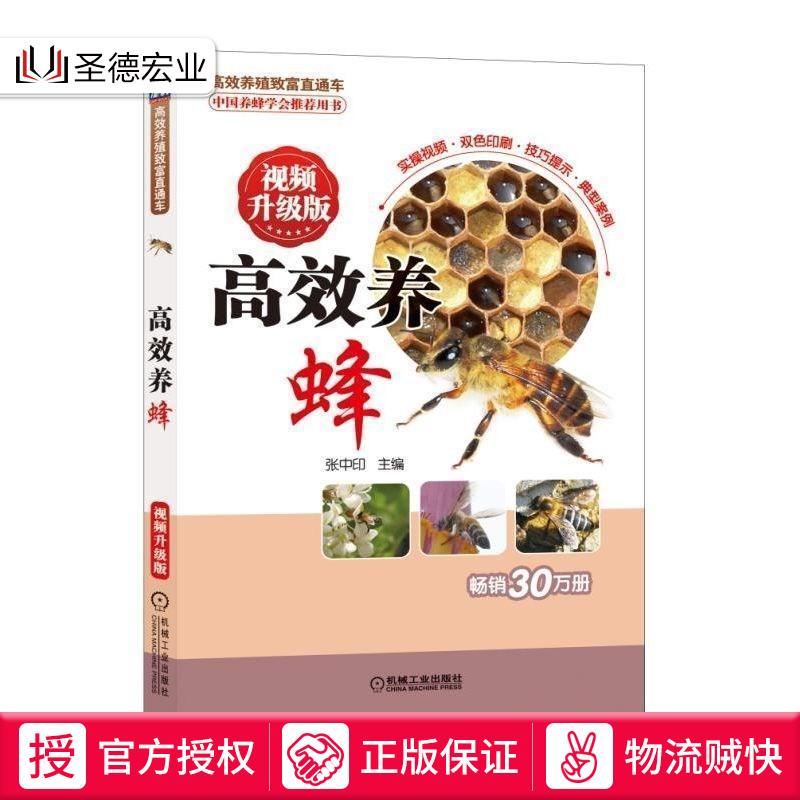 高效养蜂 视频升级版 蜜蜂良种繁育 蜂病防治技术 -养殖书籍(圣德宏业图书专营店仅售27.86元)