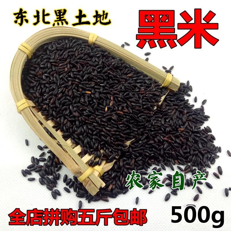 正宗黑米无染色添加东北农家自产种长粒香米500g糙米粥五谷粗杂粮