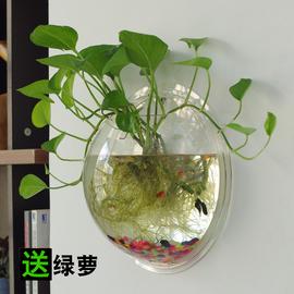 壁挂花瓶水培创意挂壁鱼缸花瓶饰品墙上花盆吊兰绿萝垂吊吊篮特大