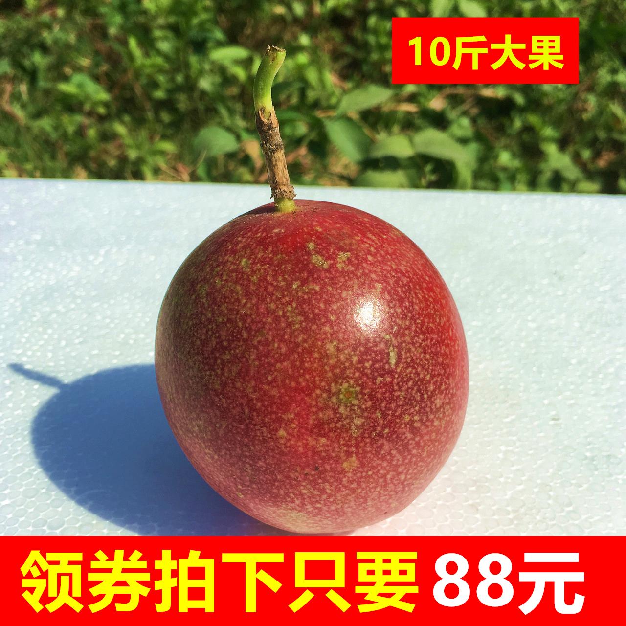广西新鲜百香果白香果当季孕妇奶茶正品保证