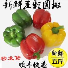 新鲜圆椒五彩椒柿子椒灯笼椒太空椒红椒黄绿椒水果椒5斤顺丰包邮