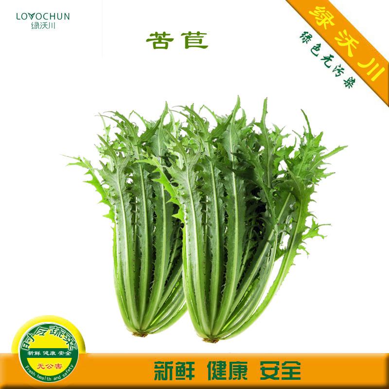 [绿沃川] 新鲜苦苣生菜 苦菊 苦叶 苦菜  沙拉菜 3-4两 无公害
