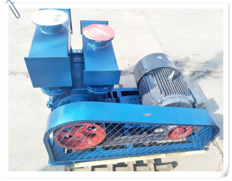 2bea1202 liquid ring negative pressure industrial vacuum pump water ring type 22KW pump head mechanical seal