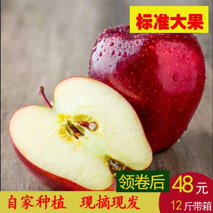 66.00元包邮甘肃礼县花牛苹果新鲜水果蛇果粉面刮泥宝宝现摘现发天水苹果十斤