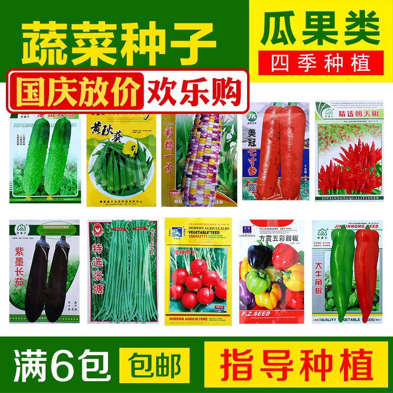 蔬菜种子瓜果类 辣椒 西红柿番茄黄瓜茄子圣女果家庭阳台庭院种菜