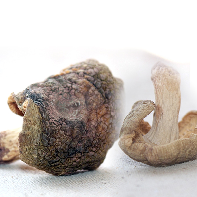 冰袋昆明件杂菌新青头菌干货云南野生特产g新鲜当天冰鲜姑特色之