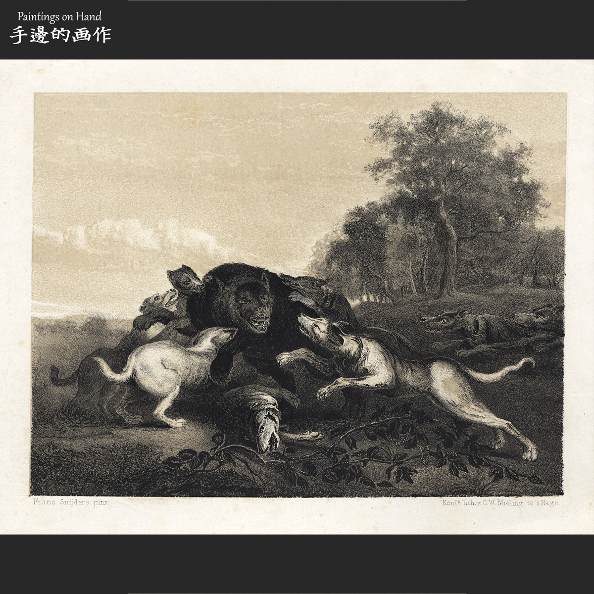 European 1840s antique colouring lithograph Vintage collection / hunting Black Bear Hound
