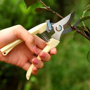 剪枝果树修枝剪刀园艺园林修花枝剪家用强力剪子神器花剪剪枝剪刀
