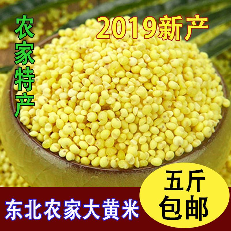 东北特产大黄米农家新米糯小米粘豆包粽子小米粥糯黏粘黄米黍子米