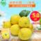 蜀珍柠檬新鲜水果尤力克黄柠檬二三级新果统果 满5斤包邮皮薄多汁