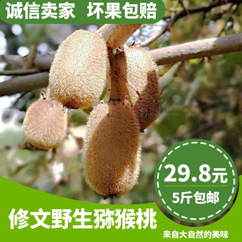 贵州修文野生猕猴桃贵长现摘新鲜奇异果5斤包邮孕妇小果7绿心水果