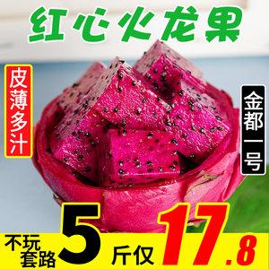 海南金都一号火龙果红心水果新鲜当季整箱5斤红肉火龙果甜包邮10