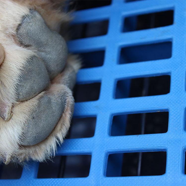 Собака коврик пластик пластина собака клетка тахта доска домашнее животное пластина излучающий доска подходит большой средний маленький собаки кот