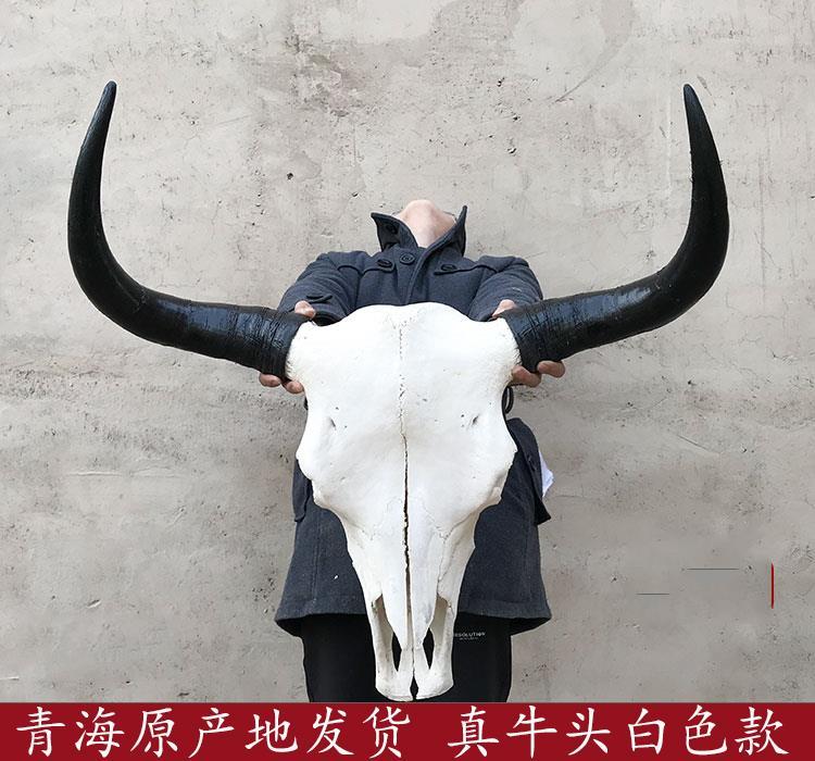 牦牛头骨工艺品牛头壁挂摆件刺青餐馆酒店酒吧家居装饰品真牛头骨