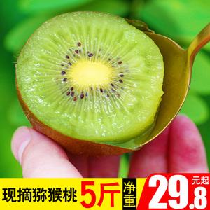 猕猴桃新鲜5斤陕西包邮当季水果绿心软枣徐香弥野生整箱奇异果