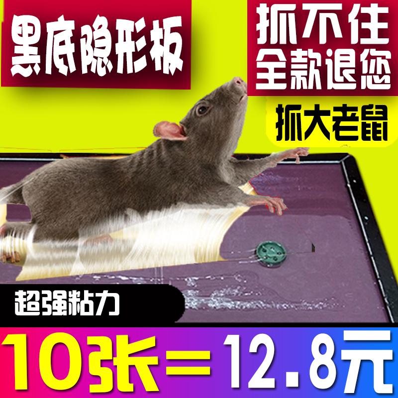 强力鼠贴餐饮多功能超厚老鼠胶特价大板粘鼠板加大加厚老鼠贴商家