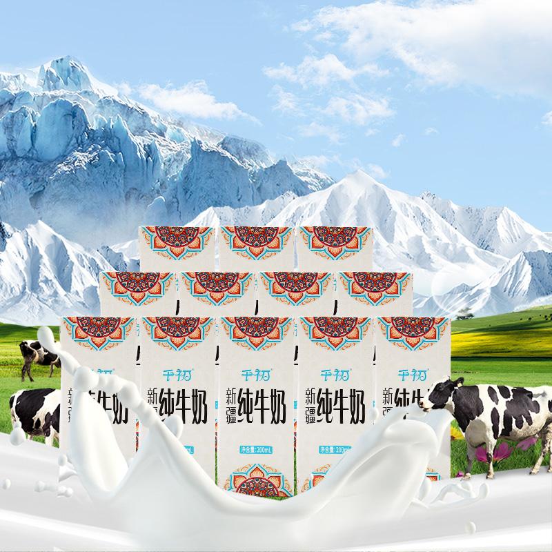 千初新疆纯牛奶 整箱成人全脂牛奶儿童学生营养奶早餐200ml*12盒