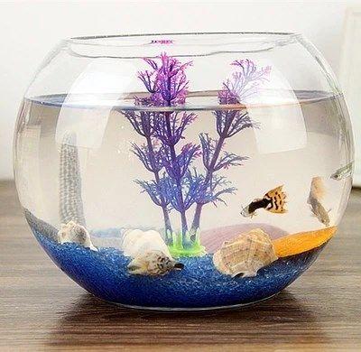 桌面缸水族箱小型创意迷你缸斗鱼缸亚克力透明塑料圆形缸