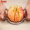 德国戴德 不锈钢切苹果切片器切水果分割器去核器切水果神器 正品