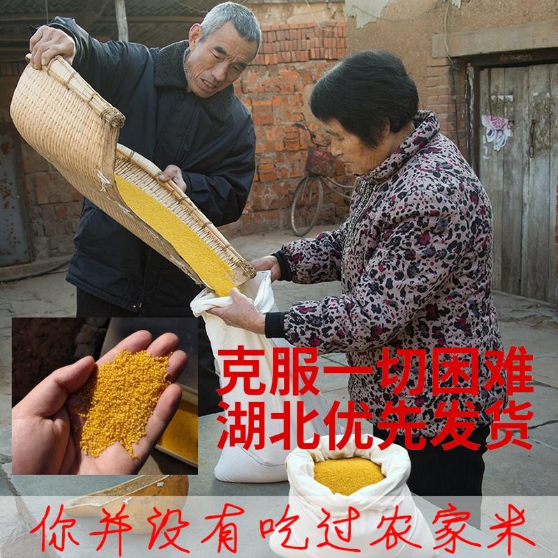 黄小米2019新米農家は山西特産の沁州黄小粥を生産しております。