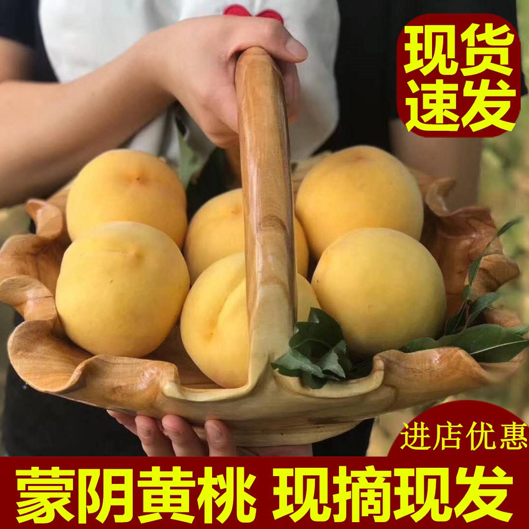锦绣黄桃现货新鲜水果现摘现发蒙阴水蜜桃孕妇脆甜大黄桃农家5斤