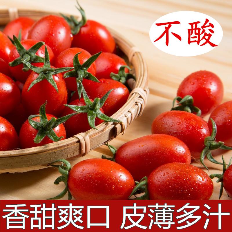 台湾小番茄进口新鲜水果圣女果樱桃西红柿孕妇纯天然食品现摘现发