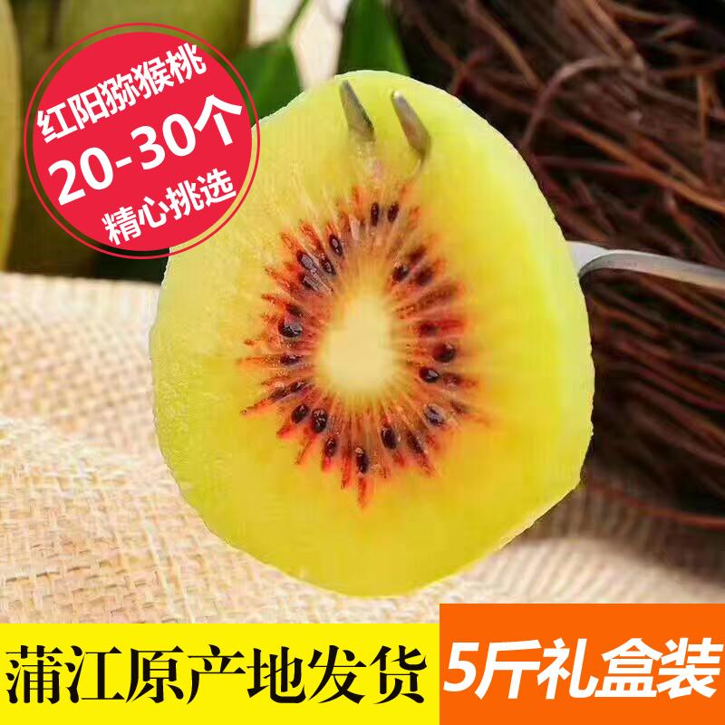 四川蒲江浦江红阳红心弥猕猴桃中大30个特大果新鲜水果5斤礼盒装