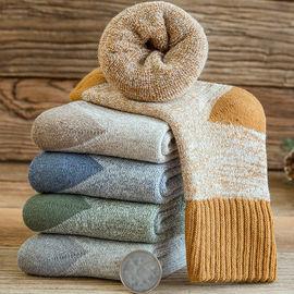 5双Z儿童袜秋冬保暖加厚加绒毛圈袜学生中大童宝宝袜男女小孩图片