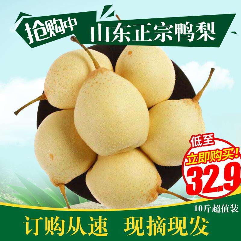 当季现摘水果山东特产冠县鸭梨非丰水梨黄梨新鲜梨子水果10斤包邮