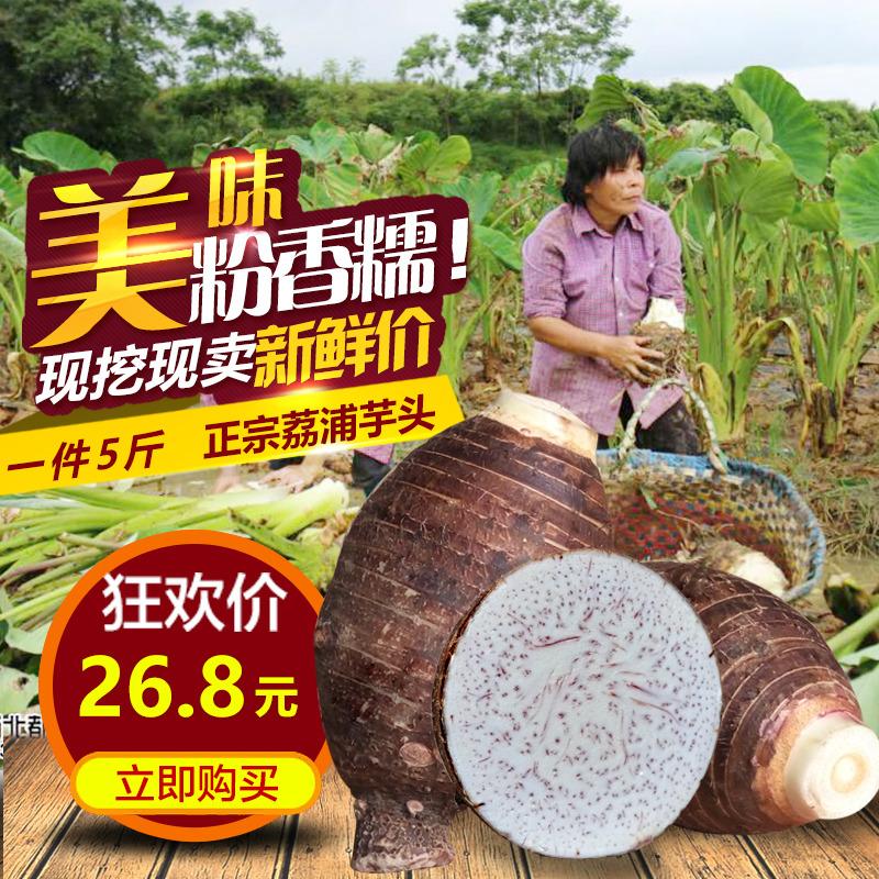 广西正宗荔浦芋头桂林特产新鲜槟榔芋艿紫藤香芋农家自种蔬菜5斤