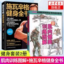 【2册套】肌肉健美训练图解+施瓦辛格健身全书 运动健身健美肌肉训练书囚徒健身女无器械健身教程大全书籍 肌肉解剖学图谱 正版