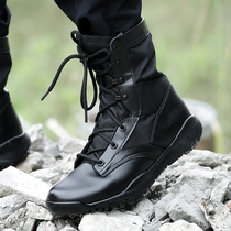 Shield lang Outdoor desert boots combat boots tactical boots flying boots Military boots male genuine breathable Gao Jing shoe boots