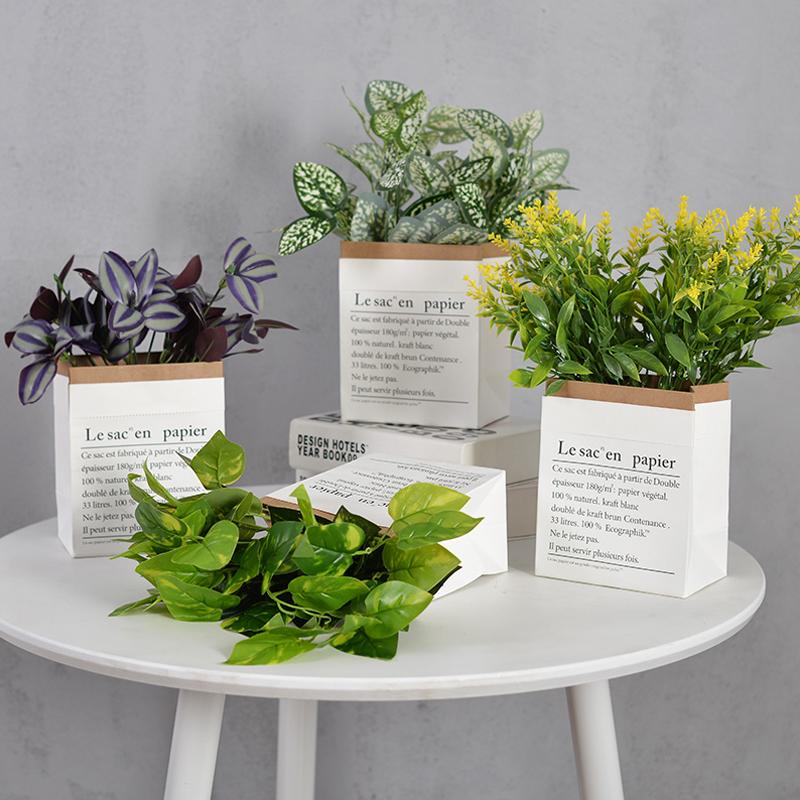 Горшки с растениями Артикул 575732464918