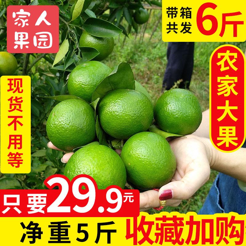 正宗广东皇帝柑新鲜大果特级当季水果贡柑甜橘子沃柑青甜桔子5斤