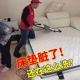 床垫清洁剂免水洗去污家用除尿渍布艺枕头地毯干洗地垫专用清洗剂