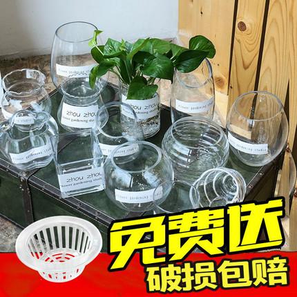 现代简约大号透明玻璃花瓶客厅摆件插花绿萝富贵竹水培花瓶玻璃瓶