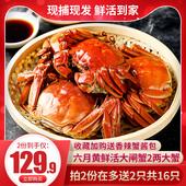 谷源道螃蟹鮮活六月黃現貨大閘蟹2兩以上特大河蟹香辣蟹面拖蟹