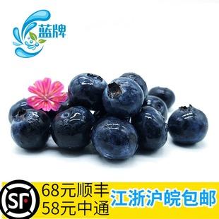 饰 非黑莓100g 新鲜蓝莓水果 蛋糕甜品西点西餐装 蓝牌 非树莓