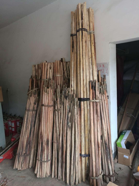 Юньнань сухожилие дерево ушу палка , кнут , пистолет поляк